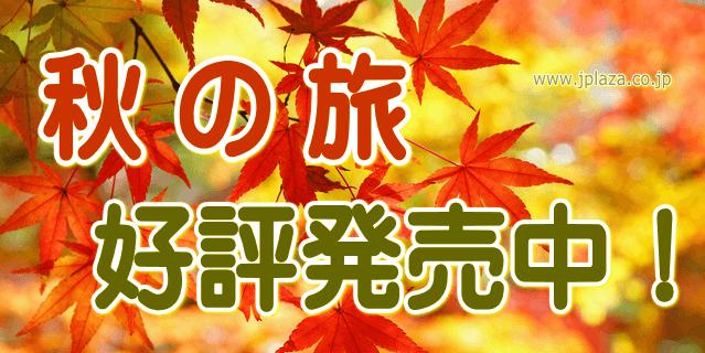 jpbnakinotabi1501
