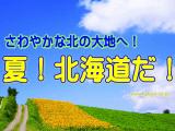 jpbnhok1604n