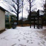 また東京にも雪が降りました 2006.02.07