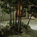 雪の大晦日。