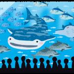 沖縄美ら海水族館に行ってまいりました。